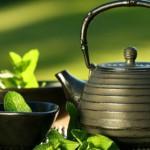 Худеем с женьшенем и зелёным чаем